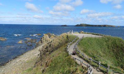 北海道礼文島|北海道よりみち旅2017夏15〜スコトン岬からトレッキング その1