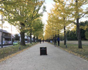 岐阜県各務原市|中部学院大学で演奏&学びの森によりみち